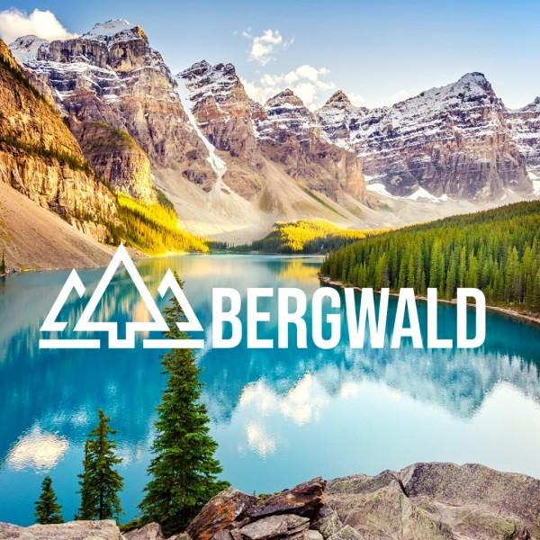 bergwalda7NReF4veBJgi